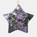 Follaje púrpura hermoso ornamentos de reyes