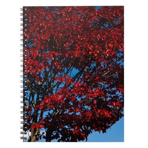 Follaje rojo oscuro libreta espiral