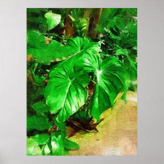 follaje tropical, jardines tropicales de Fairchild Posters
