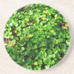 follaje verde posavasos personalizados