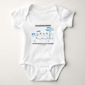 Folliculogenesis - Ootidogenesis Of Oogenesis Baby Bodysuit