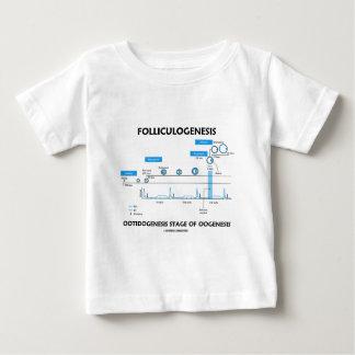 Folliculogenesis - Ootidogenesis Of Oogenesis Baby T-Shirt