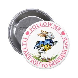 FOLLOW ME - I'LL TAKE YOU TO WONDERLAND! PINS