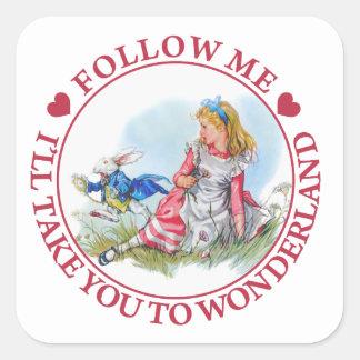 Follow Me, I'll Take you To Wonderland Square Sticker