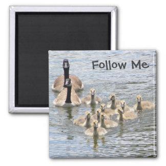 Follow Me - Magnet