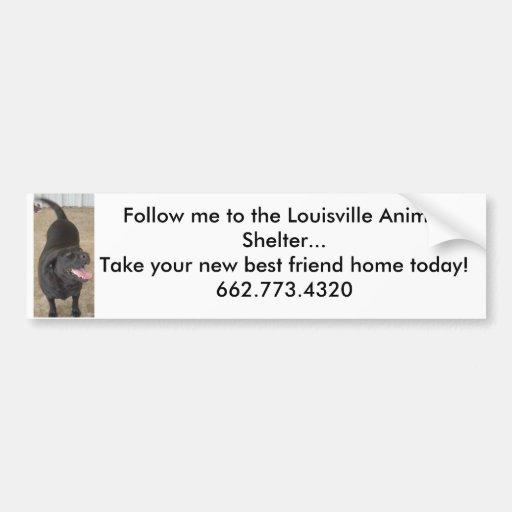 Follow Me to the Louisville Animal Shelter Bumper Stickers
