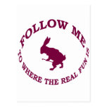 Follow Me To Where the Real Fun Is Postcard