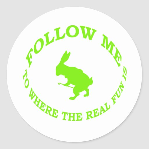 Follow Me To Where the Real Fun Is Classic Round Sticker