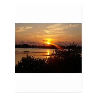 Follow the light home postcard