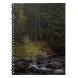 follow the light note book