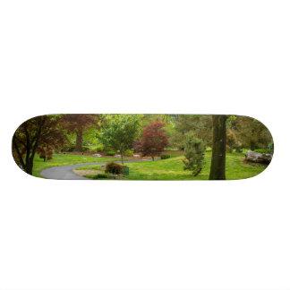 Follow The Path Pano Skateboard Deck
