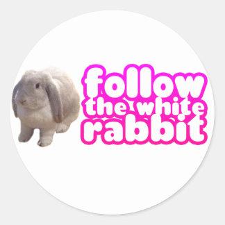 Follow The White Rabbit - Bunny Cute Classic Round Sticker