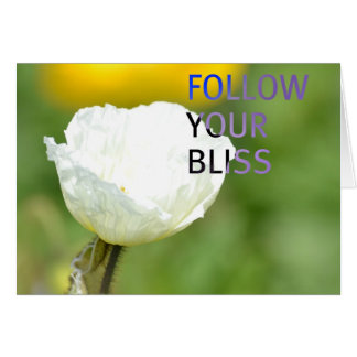 Follow Your Bliss White Tulip Card