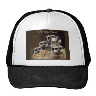 Follow Your Dreams! Trucker Hat