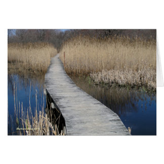 Follow Your Path: Plum Island, MA Card