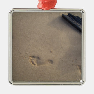 Following a Trail Footsteps in the Sand Christmas Ornaments