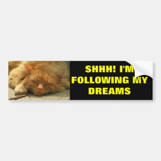 Following My Dreams Sleeping Kitty Bumper Sticker