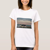 Folly Beach Pastel T-Shirt