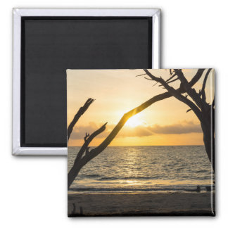 Folly Sunrise Tree Silhouette Magnet