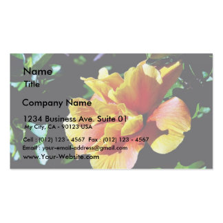 Folwers In San Diego Business Cards