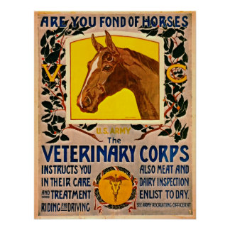 Fond of Horses 1919 Posters