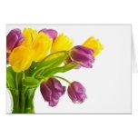 Fondo amarillo y púrpura de los tulipanes modifica felicitaciones