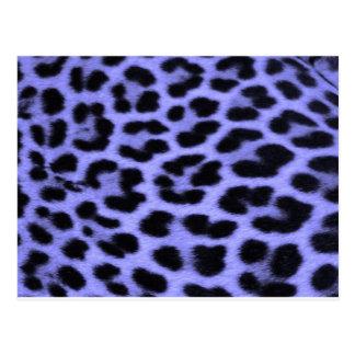 Fondo azul del estampado leopardo postales