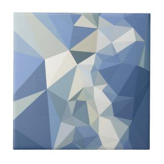 Fondo bajo abstracto azul del polígono de Columbia Azulejo Cuadrado Pequeño