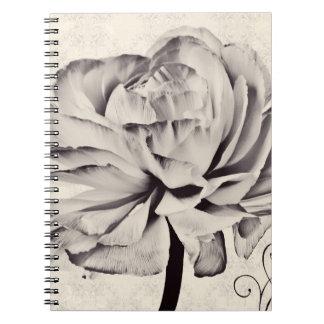 Fondo blanco del negro de la flor del ranúnculo cuadernos