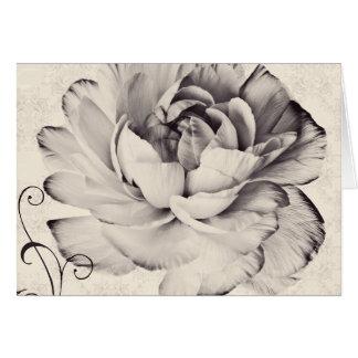 Fondo blanco del negro de la flor del ranúnculo tarjeta de felicitación