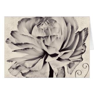 Fondo blanco del negro de la flor del ranúnculo tarjeta pequeña