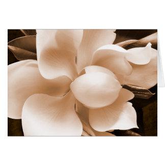 Fondo blanco del negro de la sepia de la flor de tarjeta pequeña