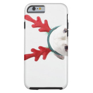 fondo blanco, dogo masculino blanco, rojo funda de iPhone 6 tough