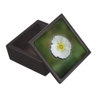 Fondo borroso de la amapola blanca caja de recuerdo de calidad