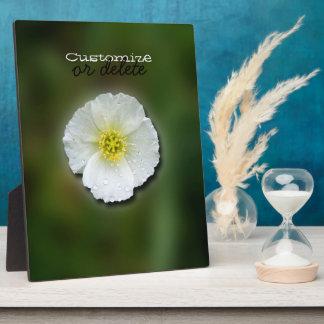 Fondo borroso de la amapola blanca; Personalizable Placa