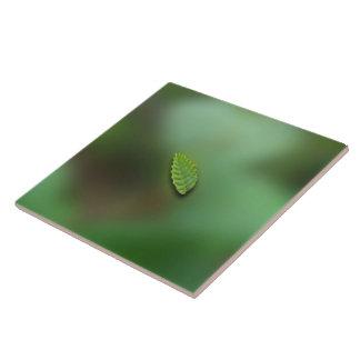 Fondo borroso hoja verde; Ningún saludo Teja Ceramica