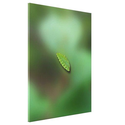Fondo borroso hoja verde; Ningún saludo Impresión En Lona Estirada