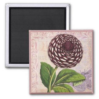 Fondo botánico del damasco del collage de la dalia imán cuadrado
