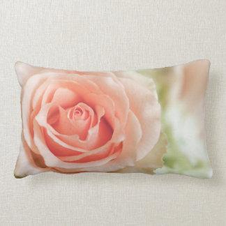 Fondo color de rosa rosado del melocotón cojín