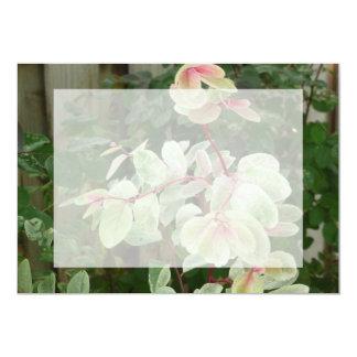fondo colorido de las hojas de la planta del invitación 12,7 x 17,8 cm
