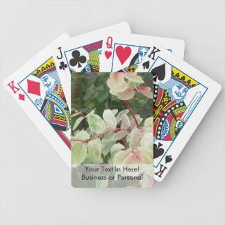 fondo colorido de las hojas de la planta del snowb barajas de cartas