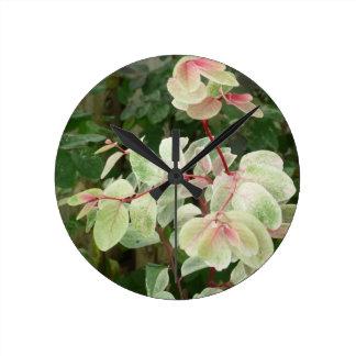 fondo colorido de las hojas de la planta del snowb reloj redondo mediano
