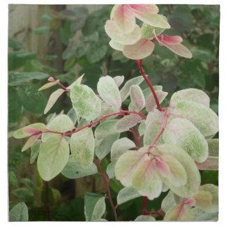 fondo colorido de las hojas de la planta del snowb servilleta