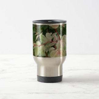 fondo colorido de las hojas de la planta del snowb tazas de café