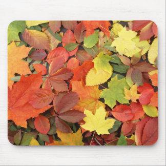 Fondo colorido de las hojas de otoño caidas mouse pad
