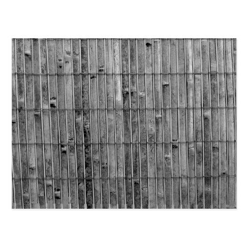 fondo de bambú .jpg del bw 2 de la estera postal