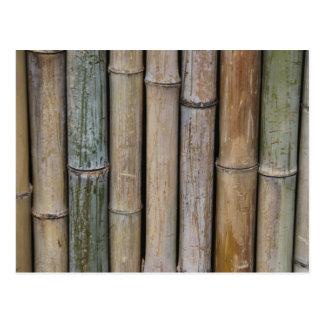 Fondo de bambú tarjeta postal