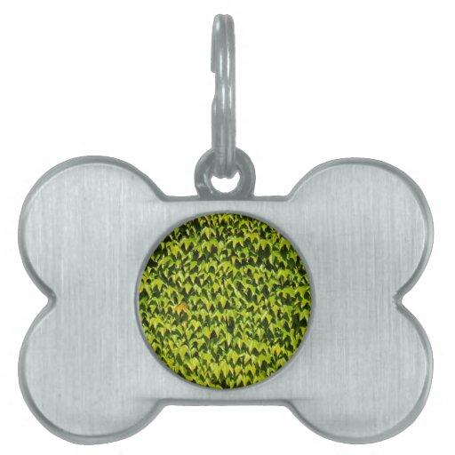 Fondo de la enredadera japonesa placa de mascota