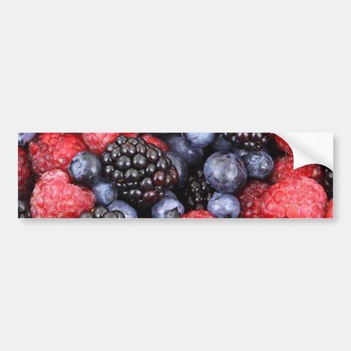 Fondo de la fruta del bosque etiqueta de parachoque