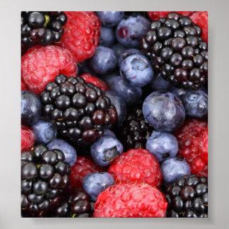 Fondo de la fruta del bosque póster